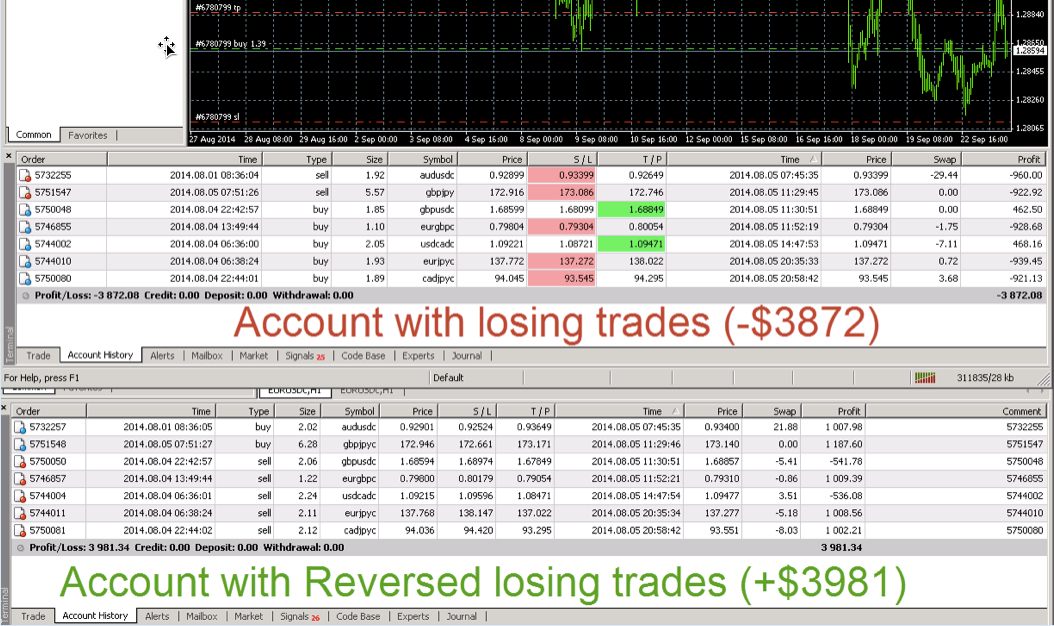 forex trade copier software